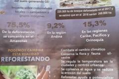Capacitación ambiental
